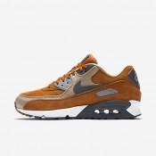 Chaussures de sport Nike Air Max 90 Premium homme Ocre du désert/Lin/Gris loup/Gris foncé