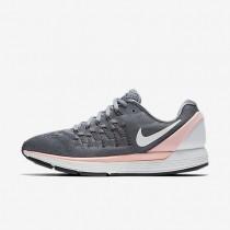 Chaussures de sport Nike Air Zoom Odyssey 2 femme Gris froid/Rouge lave brillant/Bleu polarisé/Blanc sommet